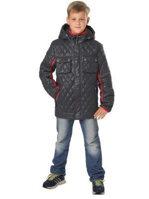 Куртка Корнет OVAS. Цвет: серый