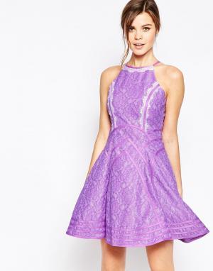 Forever Unique Кроткое приталенное платье с кружевной отделкой Daphne. Цвет: фиолетовый