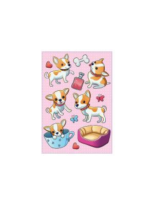 Карманные собачки DECORETTO. Цвет: бежевый, розовый, белый, голубой, фиолетовый