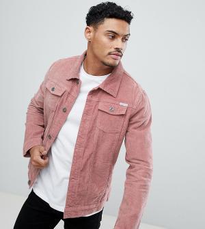 Liquor N Poker Вельветовая куртка. Цвет: розовый