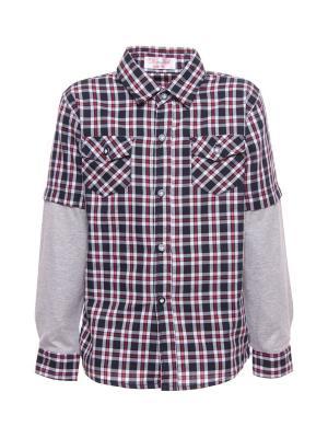 Рубашка DAMY-M. Цвет: черный