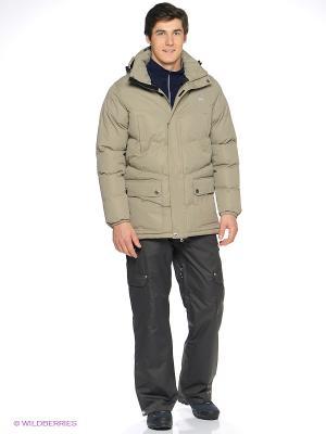 Куртка Trespass. Цвет: бежевый