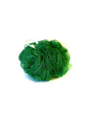 Мочалка-спонж Шар жесткая KONONO. Цвет: зеленый