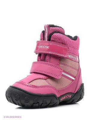 Полусапожки GEOX. Цвет: фуксия, розовый