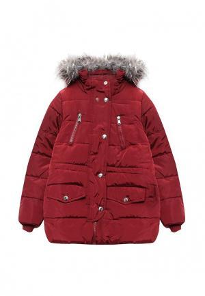 Куртка Modis. Цвет: бордовый