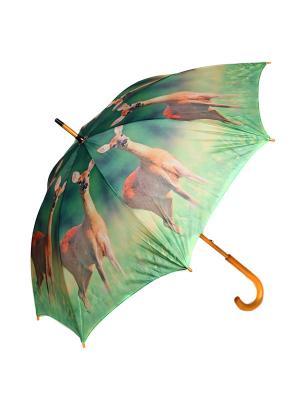 Зонт-трость Mitya Veselkov. Цвет: зеленый