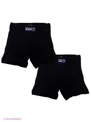 Трусы-шорты для мальчиков Nirey. Цвет: черный