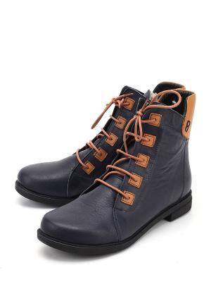 Ботинки SPECTRA. Цвет: синий
