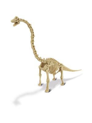 Набор для проведения раскопок - Брахиозавр серия Dr.Steve Hunters Geoworld. Цвет: бежевый, голубой, салатовый