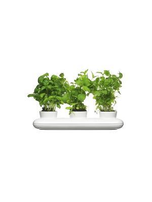 Горшок для растений, тройной Sagaform. Цвет: белый