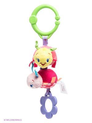 Развивающая игрушка Дрожащий дружок, Божьи коровки BRIGHT STARTS. Цвет: розовый, салатовый, фиолетовый