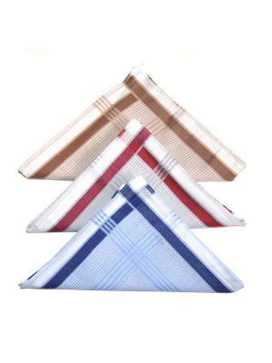 Носовой платок, 3 шт Lola. Цвет: бордовый, голубой, коричневый