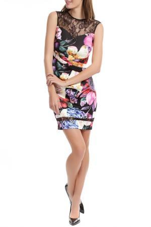 Платье LIPSY. Цвет: multi