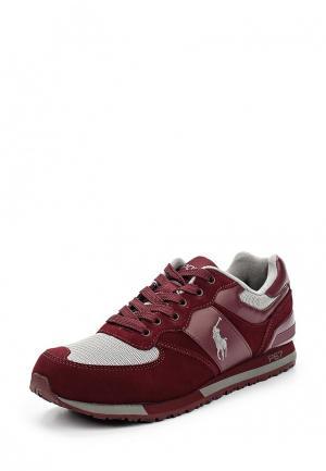 Кроссовки Polo Ralph Lauren. Цвет: бордовый