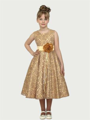 Платье Злата Shened