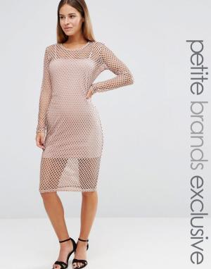 John Zack Petite Сетчатое облегающее платье. Цвет: розовый