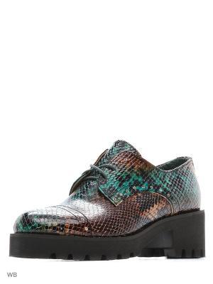 Ботинки ESTELLA. Цвет: темно-зеленый, темно-коричневый