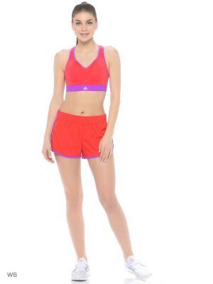 Спортивные шорты Adidas. Цвет: красный