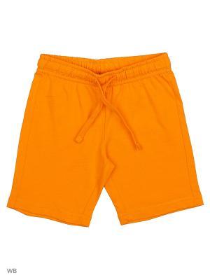 Шорты CHICCO. Цвет: светло-оранжевый