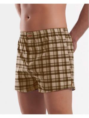 Мужские трусы Oztas underwear. Цвет: коричневый