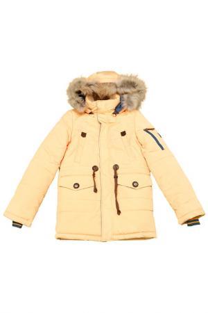 Куртка на синтепоне Arctic Goose. Цвет: мультицвет