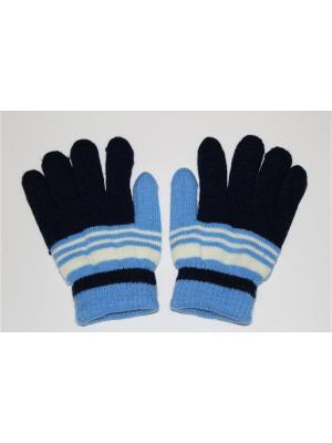 Перчатки Cascatto. Цвет: темно-синий