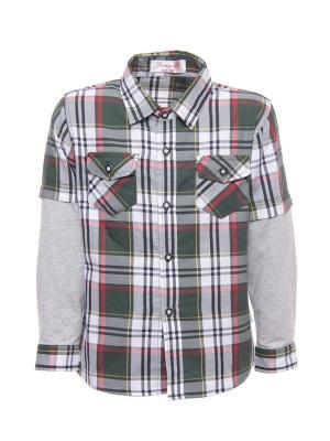 Рубашка DAMY-M. Цвет: зеленый