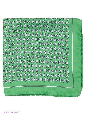 Платок-паше Troy collezione. Цвет: зеленый, белый