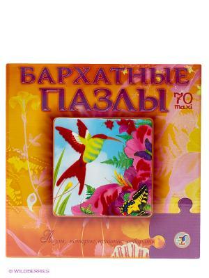Бархатные пазлы Колибри Дрофа-Медиа. Цвет: оранжевый