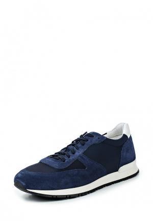 Кроссовки Liu Jo Uomo. Цвет: синий