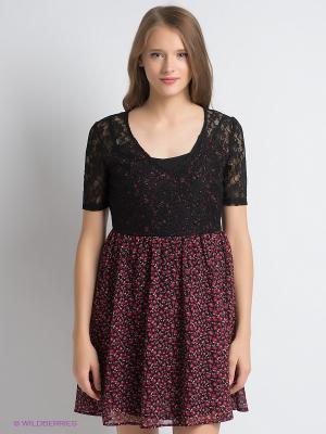Платье PEPE JEANS LONDON. Цвет: темно-красный, бордовый, черный