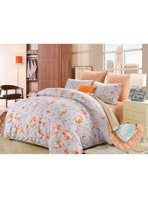 Комплект постельного белья, Ивонна, Семейный KAZANOV.A.. Цвет: серо-голубой