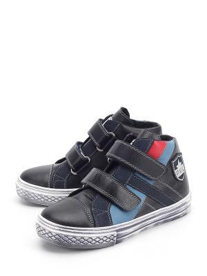 Ботинки PAVLE. Цвет: мультиколор