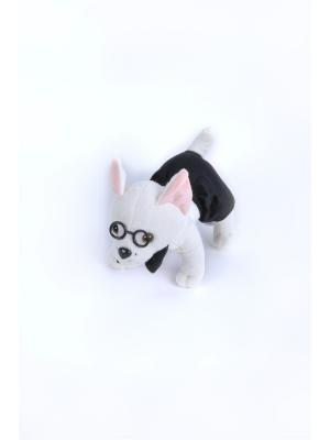 Мягкая игрушка Чихуа-хуа (мальчик) 8.278.1-1 цвет белый Malvina. Цвет: белый