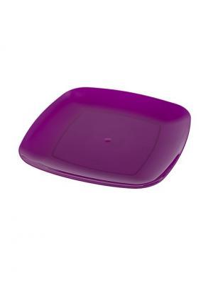 Комплект тарелка квадратная 240*240 -8 шт. Полимербыт. Цвет: фиолетовый