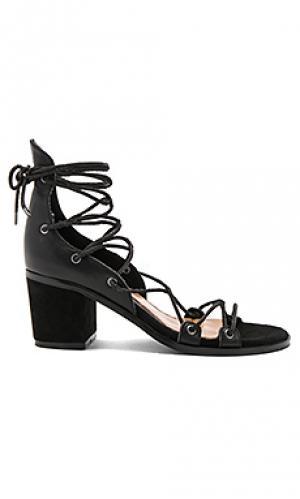 Босоножки на каблуке hold tight JAGGAR. Цвет: черный
