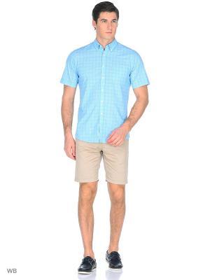 Рубашка Boston Brothers. Цвет: бирюзовый