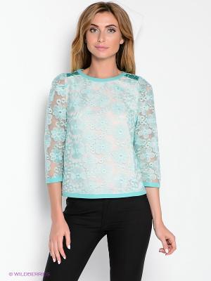 Блуза DEVORE. Цвет: голубой