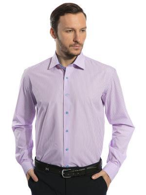 Рубашка GroStyle. Цвет: голубой, белый, розовый
