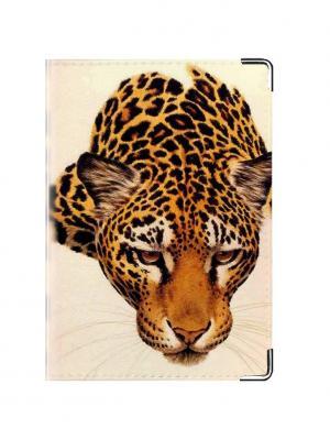 Обложка для паспорта LeoSkin Tina Bolotina. Цвет: оранжевый