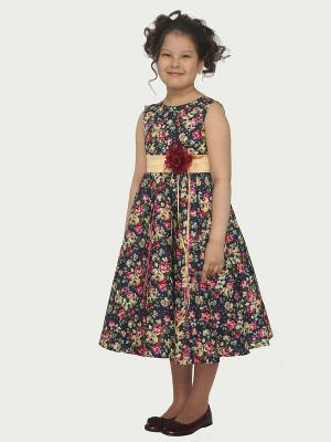 Платье Паола Shened