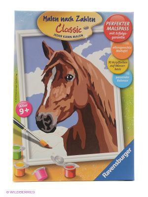 Раскрашивание по номерам Лошадь Ravensburger. Цвет: коричневый