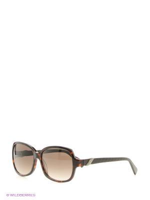 Солнцезащитные очки Pierre Cardin. Цвет: черный