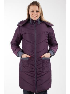 Пальто Ням-Ням. Цвет: фиолетовый