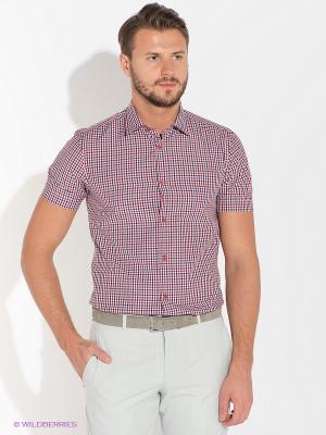 Рубашка BAZIONI. Цвет: красный