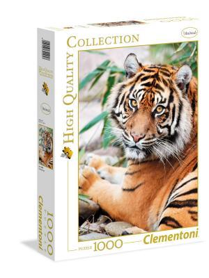 Итальянский пазл Clementoni, серия High Quality - Суматранский тигр. Clementoni. Цвет: бежевый, белый, черный, синий