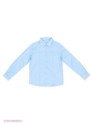 Рубашка Pinetti. Цвет: голубой