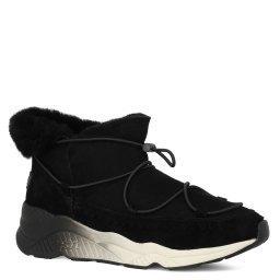 Ботинки  MITSOUKO черный ASH