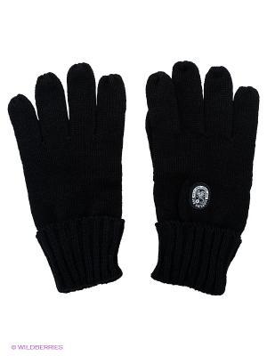 Перчатки Scorpion Bay. Цвет: черный