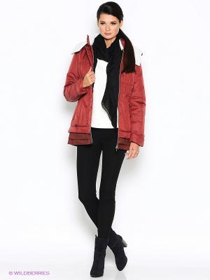 Куртка D`imma. Цвет: коричневый, бордовый